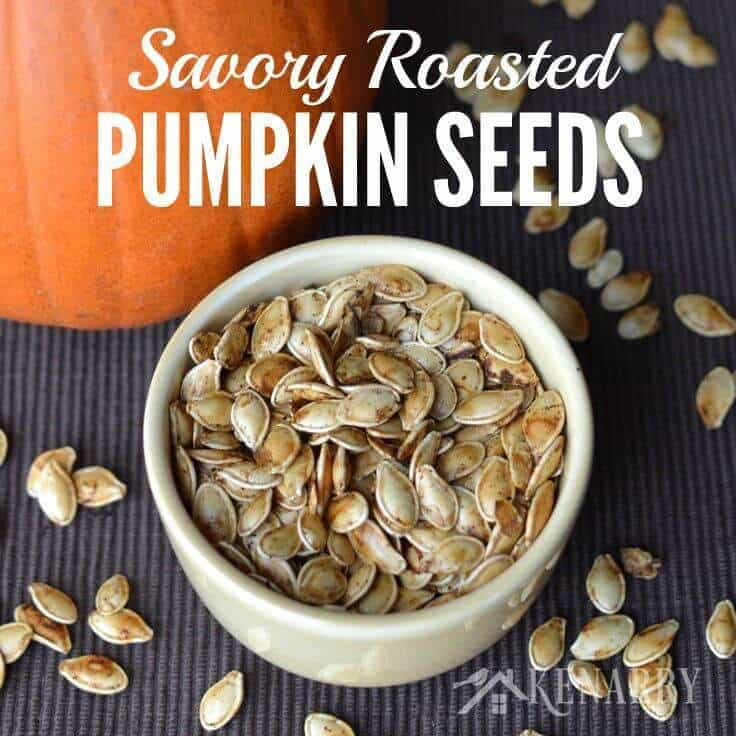 I've always wanted to know how to roast pumpkin seeds! I can't wait to try this savory recipe idea after we carve pumpkins for Halloween this fall.