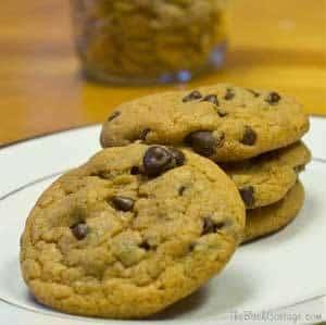 Chocolate Chip Pumpkin Pudding Cookies