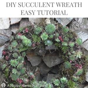 DIY succulents wreath tutorial