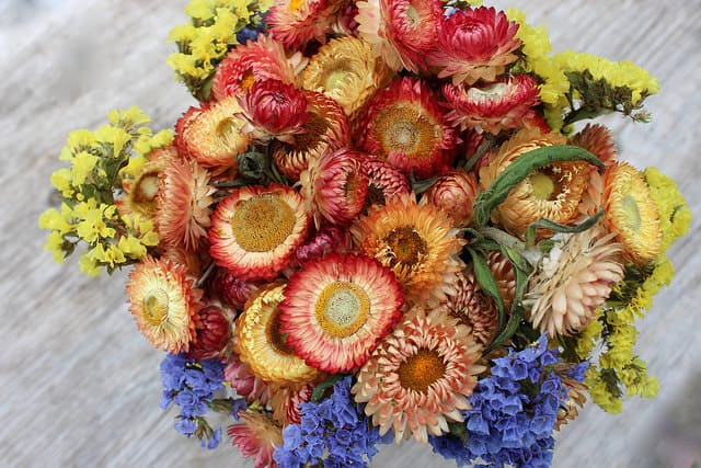 strawflower-statice-bouquet