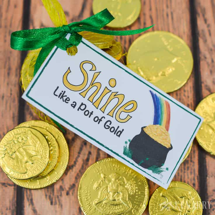 You shine like a pot of gold! Use these free printable treat tags with a bright colorful rainbow for St. Patrick's Day party favors. The design is fun for both kids and adults.