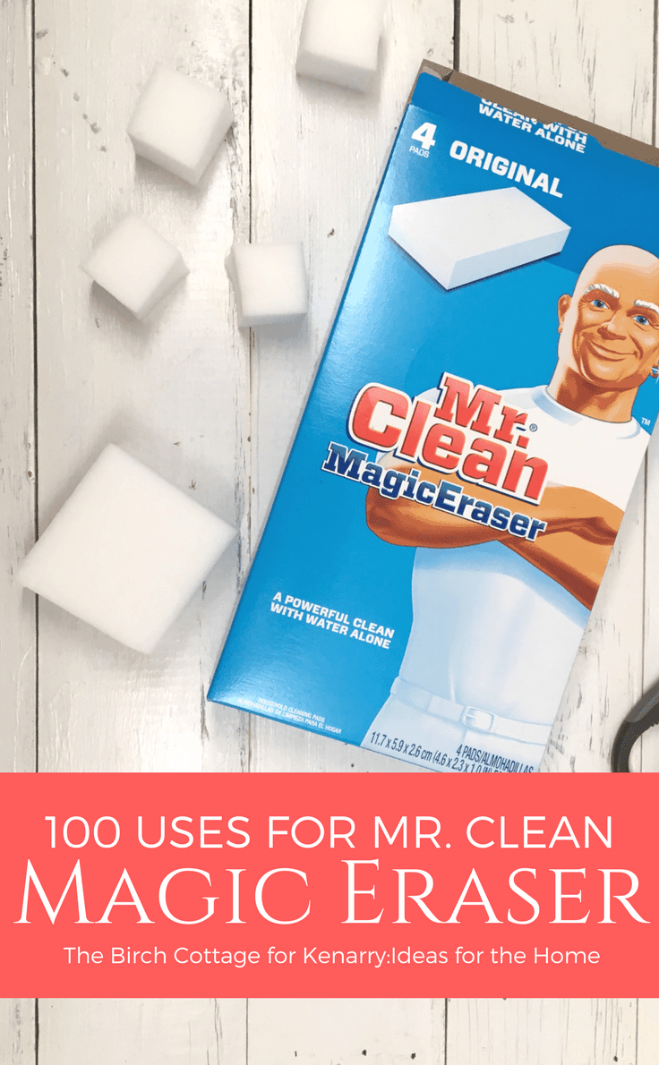 100 Uses for Mr Clean Magic Eraser by The Birch Cottage