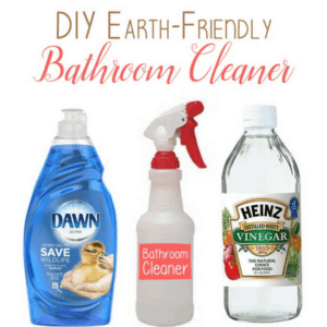 DIY Bathroom Cleaner by The Birch Cottage