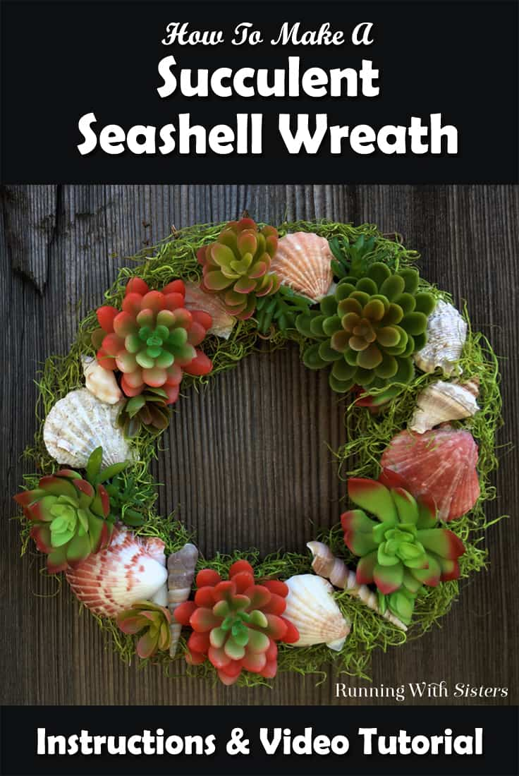 Make a Succulent Seashell Wreath perfect for summer! In this video tutorial we'll show you how to attach the succulents and shells and how to finish with moss. Complete step by step instructions.