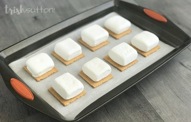 Marshmallows placed on graham cracker squares, all placed on a cookie sheet.