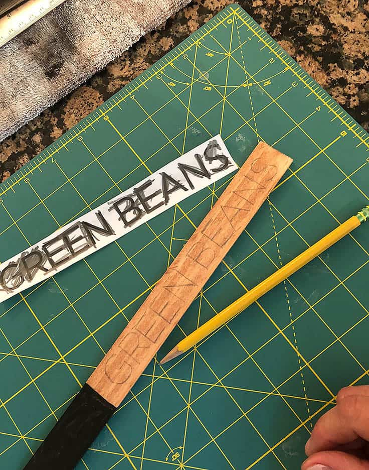 DIY Plant Markers for Your Garden