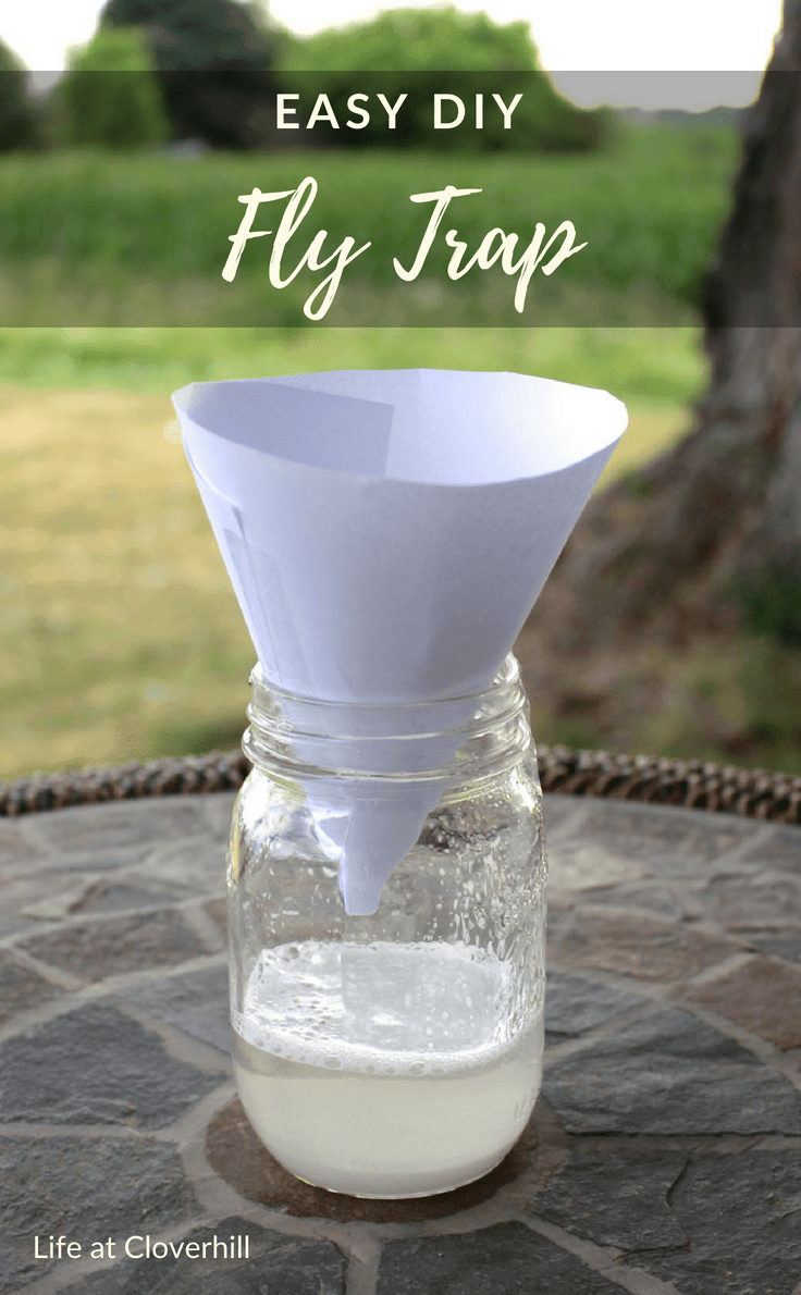 Tired of pesky flies around your home? You've got to try this easy DIY fly trap to help get rid of them! All you need are a few common ingredients that you probably already have in your home. #summer #naturalremedies #pestcontrol