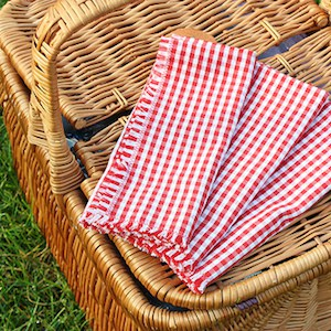 frayed-gingham-picnic-napkins