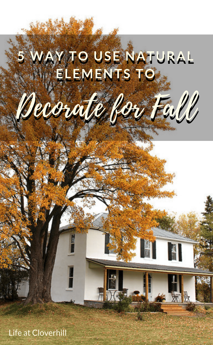Take inspiration from the great outdoors when decorating for fall this year. From acorns and leaves to flowers and pumpkins there are plenty of ways to incorporate natural elements into your home for the season. #fall #falldecorideas #fallhomedecor #falldecorations