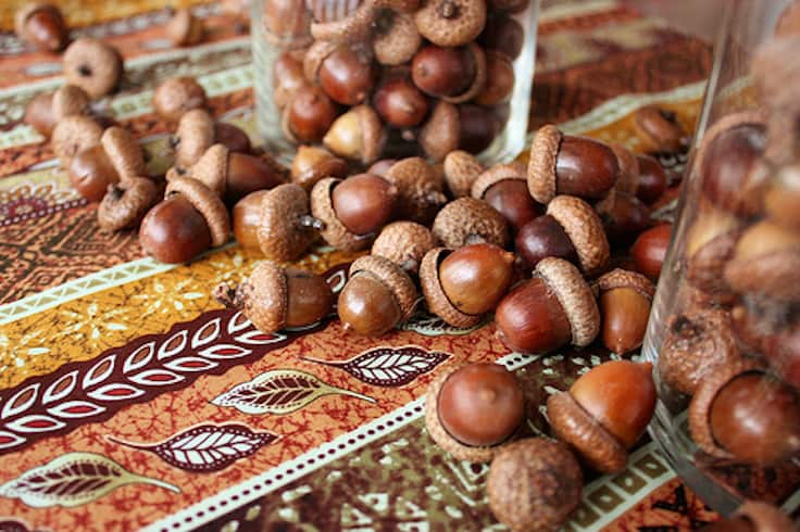 decorate for fall with acorns