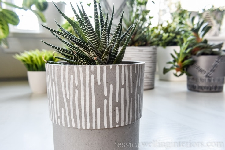 image of DIY modern indoor plant pots with paint pens.