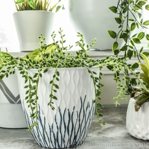 image of modern indoor planters made from dollar store pots.