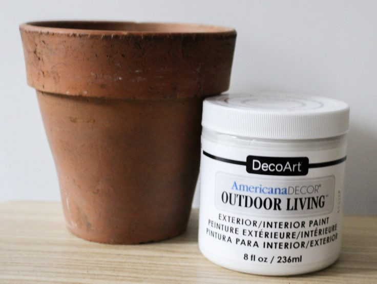 Clay pot with outdoor living paint