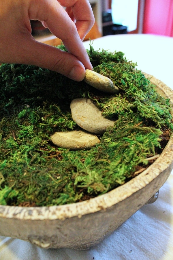 Create a simple indoor garden for succulents with this DIY fairy garden terrarium. Most of the materials can be found in your yard or craft stash.
