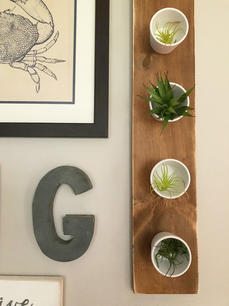 A close-up of a planter hanging on the wall.