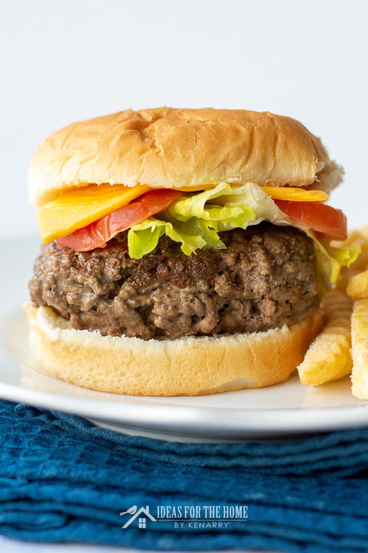 Side view of a delicious grilled hamburger on a plate with french fries