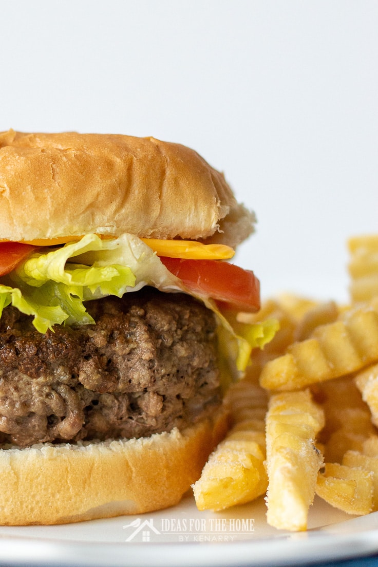 Close up of french fries next to a meatloaf hamburger on a bun with cheese, tomato and lettuce